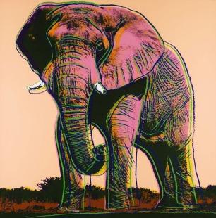 ENDANGERED SPECIES: AFRICAN ELEPHANT II.293